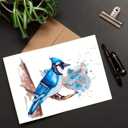 Blue Jay Greeting Card Watercolor Print Cute Birthday Get Well Anniversary Valentines Mothers Day 5 X 7 127 178 Cm