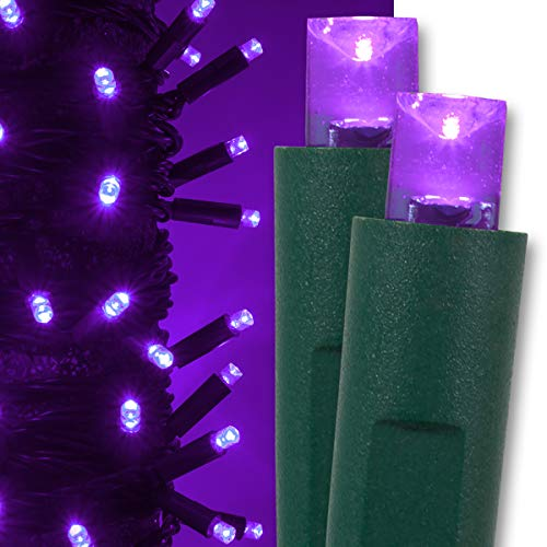 Kringle Traditions Purple LED Christmas Mini String Light Set, 50 Lights, 17 ft Indoor/Outdoor LED Christmas Lights Halloween Decorations Outdoor Christmas String Lights, 4