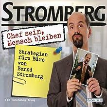 Chef sein, Mensch bleiben. Strategien fürs Büro von Bernd Stromberg Hörbuch von Ralf Husmann Gesprochen von: Christoph Maria Herbst