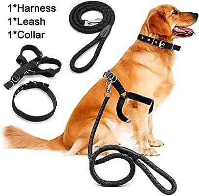 Juego de correa de arnés de perro, cuerda de tracción para ...