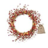 "Best LampLust Fireplaces - 20"" Pre-lit Christmas Wreath with Red and Gold Review"