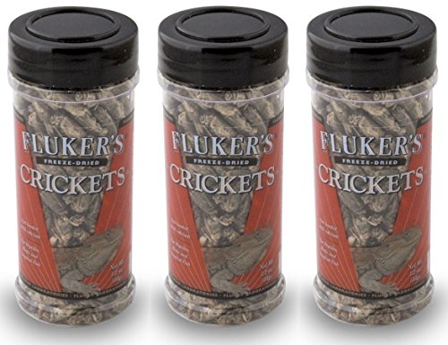 Fluker's 1.2-Ounce Freeze Dried Crickets (Pack of (Flukers Crickets)
