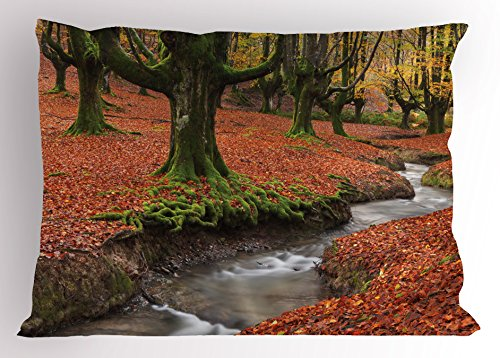 Lunarable Landscape Pillow Sham, Flowing Stream Colorful Autumn Forest Leaves Gorbea Natural Park Spain, Decorative Standard Queen Size Printed Pillowcase, 30 X 20 Inches, Paprika and Green by Lunarable