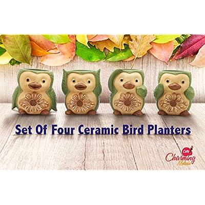 Charming Melodie-Ceramic Bird/Penguin Succulent pots,Cute Set of 4 Small Flower pots Cactus Animal Planter, Indoor Plant Pot,Herb Pot, Mini Succulent Planters with Drainage Hole 3.6x3.5x2.3 Inch: Garden & Outdoor