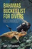 Bahamas Bucket List for Divers Bimini