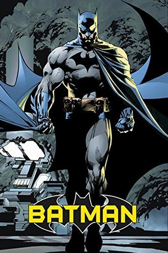 Batman - Comic 24x36 Poster Art Print (The Dark Knight Walking At Night - Attack)