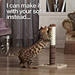 4 Paws Stuff Tall Cat Scratching Post Cat Interactive Toys - Cat Scratch Post Cats Kittens - Plush Sisal Scratch Pole Cat Scratcher - 22 inches (Beige) 18