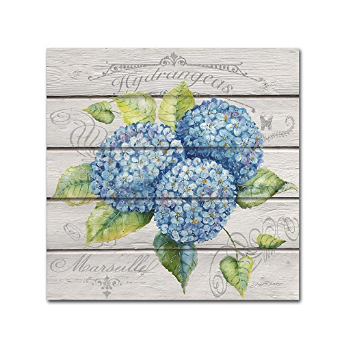 Blue Hydrangeas by Jean Plout, 14x14-Inch Canvas Wall Art