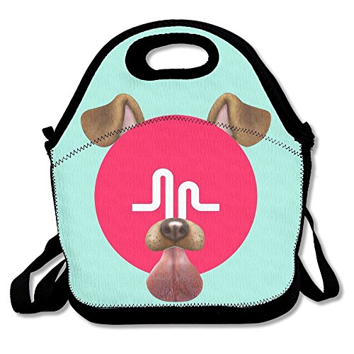Musically Logo Lunch Bags Insulated Travel Picnic Lunchbox Tote Handbag With Shoulder Strap For Women Teens Girls Kids Adults - Logo Lunch Box