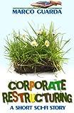 Corporate Restructuring, Marco Guarda, 1492810878