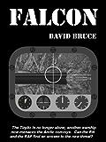 Falcon (The MacKay Series Book 2)