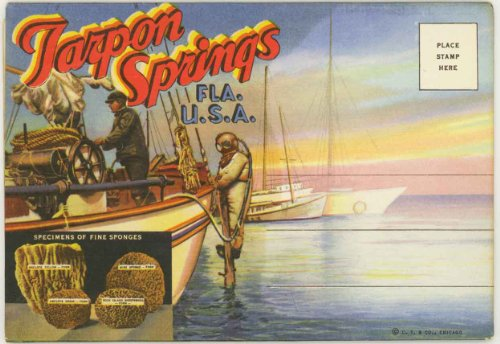 (Tarpon Springs & Sponge Divers (1940's Souvenir Florida Postcard Folder) #D-3918)