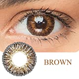 Women Multi-Color Colored Cute Charm and Attractive Fashion Contact Lenses Cosmetic Makeup Eye Shadow (Type 1, Brown)