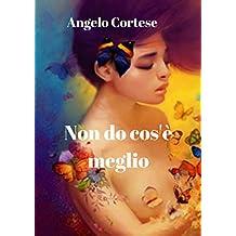 Non do cos'è meglio (Italian Edition)