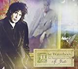 An Appointment With Mr. Yeats by The Waterboys (2013-03-26)