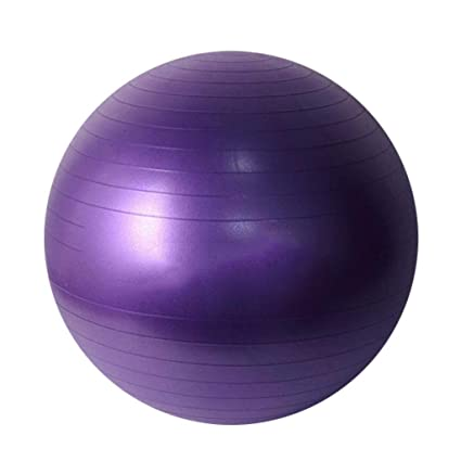 Amazon.com: XSJ-Sports & Fitness Exercise Ball Yoga Ball ...