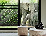 Window Mural Elephants In Love window sticker window film window tattoo glass sticker window art window décor window decoration Size: 75.6 x 56.7 inches