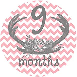 12 Monthly Baby Stickers, Deer Antlers, Flowers, Baby Girl, Baby Belly Stickers, Baby Month Stickers, First Year Stickers Months 1-12, Pink, Grey, Gray, Chevron, Deer Antlers, Girl 9