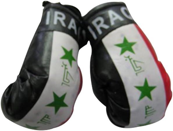 Bandera Mini guantes de boxeo pequeños para colgar más de coche automóvil espejo – Asia y África (1-Pack, país: Iraq): Amazon.es: Deportes y aire libre