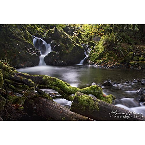 Olympic National Park Waterfall Photo Print,