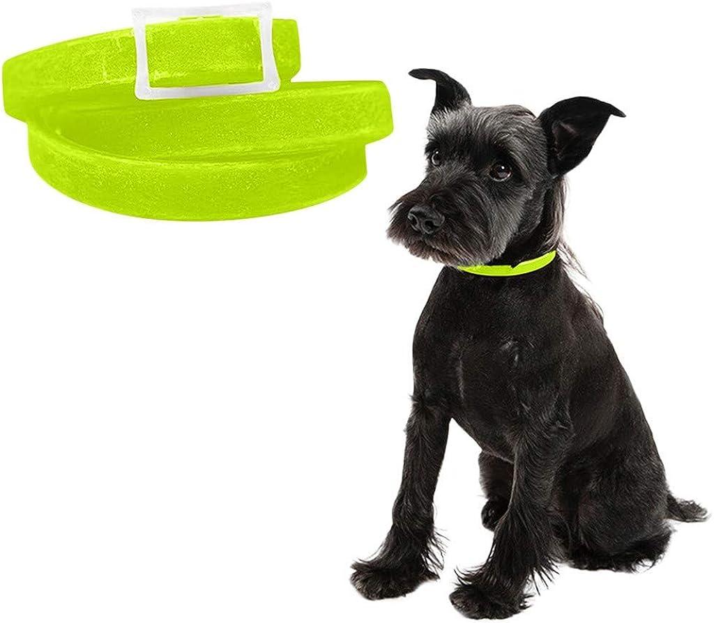 TWBB Collar para Gatitos Perro Pequeños, Impermeable Collares, Accesorios para Mascotas, Elimina El Collar de Pulgas y Garrapatas de Perros y Gatos, Ajustable 20-65cm: Amazon.es: Ropa y accesorios