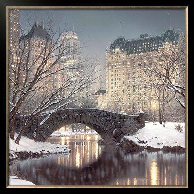 Twilight in Central Park Framed Art Poster Print by Rod Chase, 33x33 (Framed Park Central)