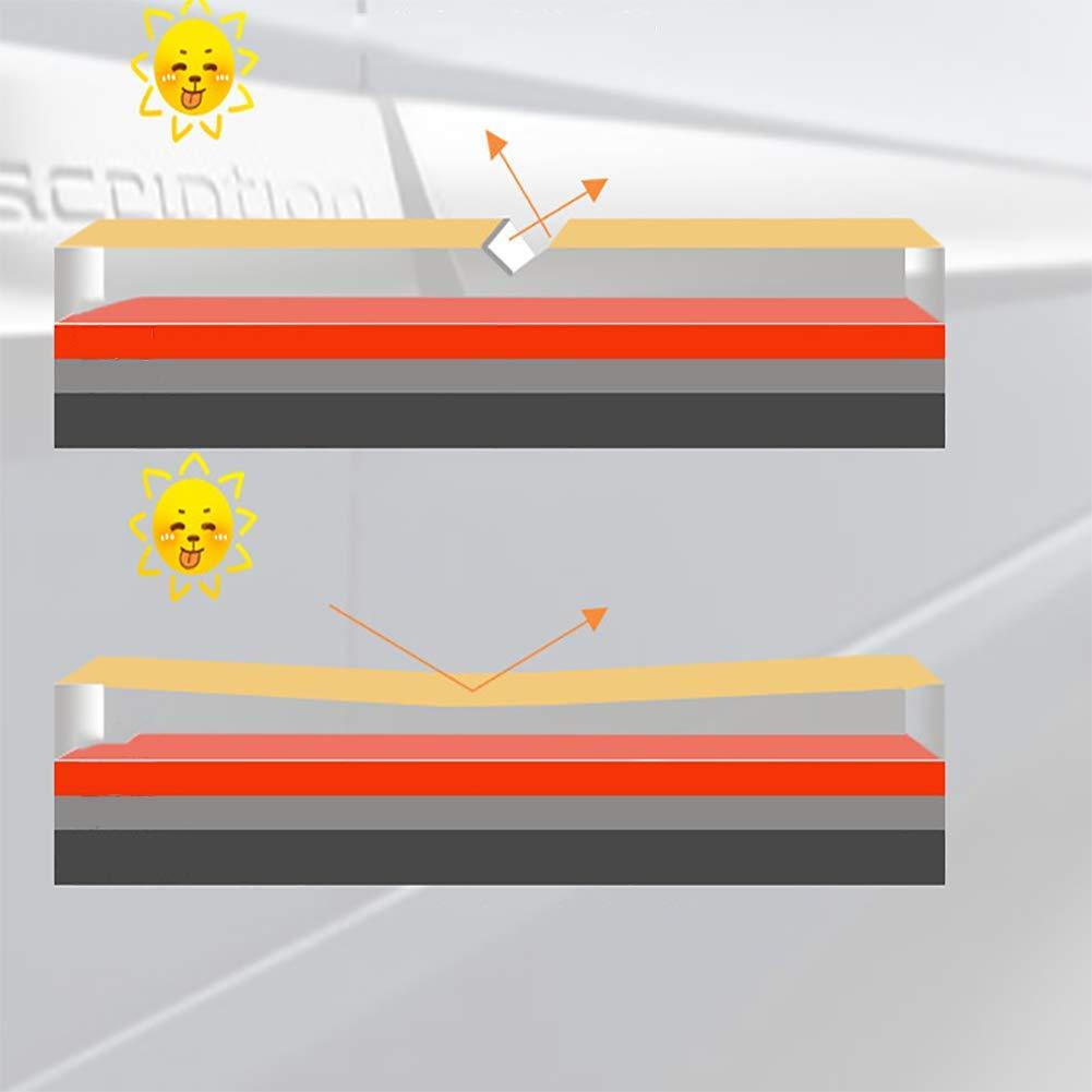 LALEO Mini Lucidatrice Auto Portatile 12V 10W Multifunzione Soft Start Levigatrice Lucidatore