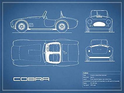 Amazon imagekind wall art print entitled ac cobra blueprint by imagekind wall art print entitled ac cobra blueprint by mark rogan 21 x 16 malvernweather Gallery