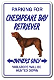 Chesapeake Bay Retriever Novelty Sign | Indoor/Outdoor | Funny Home Décor for Garages, Living Rooms, Bedroom, Offices | SignMission Dog Pet Parking Hunting Hunt Vet Breeder Sign Wall Plaque Decoration