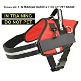 "Large Red Professional Service Dog Harness with 'IN TRAINING' & 'DO NOT PET' Badges Included Girth 30"" - 37"" - Redline K9"