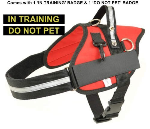 Large Red Professional Service Dog Harness with 'IN TRAINING' & 'DO NOT PET' Badges Included Girth 30  37  Redline K9
