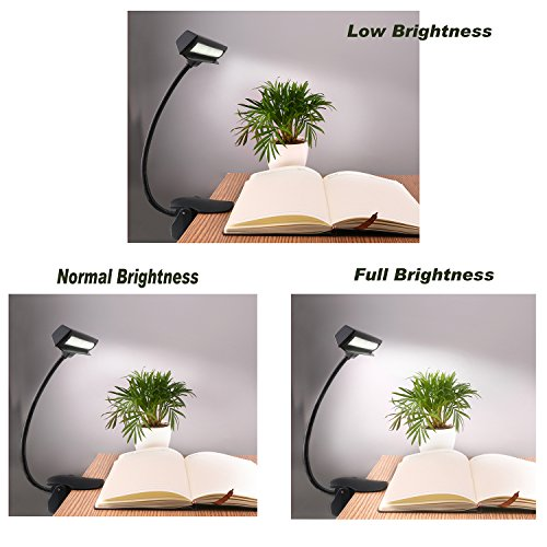 CeSunlight Clip on Reading Light, Rechargeable Battery Operated Book Light, Portable Music Stand Lights, LED Desk Lamp with Good Eye Protection Brightness by CeSunlight (Image #2)