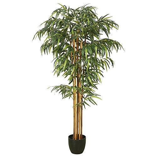 Vickerman TA170101 Everyday Bamboo Tree by Vickerman