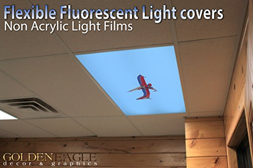 Southern Jumbo Jet - 2ft x 4ft Drop Ceiling Fluorescent Decorative Ceiling Light Cover Skylight Film