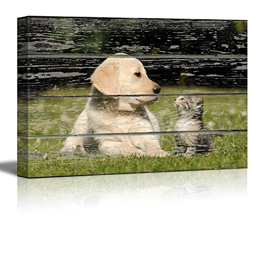 Lovely Dog and Cat on Vintage Wood Textured Background Rustic Country Style Gallery