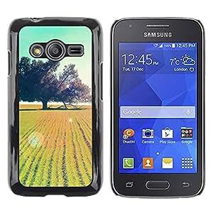 Be Good Phone Accessory // Dura Cáscara cubierta Protectora Caso Carcasa Funda de Protección para Samsung Galaxy Ace 4 G313 SM-G313F // Summer Field Sun Teal Tree Nature Oak