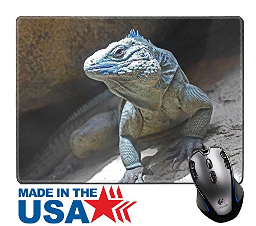 "MSD Natural Rubber Mouse Pad/Mat with Stitched Edges 9.8"" x 7.9"" Closeup of the Endangered Blue Grand Cayman Iguana IMAGE 20002168 (Grand Animal Scale Wildlife)"