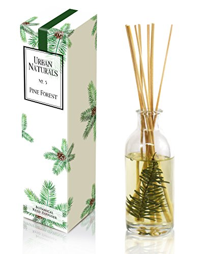Urban Naturals Pine Tree Reed Diffuser Oil Pine Forest No. 3 | Pine Needles, Eucalyptus, Juniper Berries & Balsam Fragrance Notes | Year Round Christmas Tree Scent Made in The USA - incensecentral.us