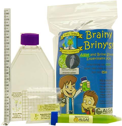 (Algae Research Supply Brainy Briny's Algae and Brine Shrimp Experiment Kit)