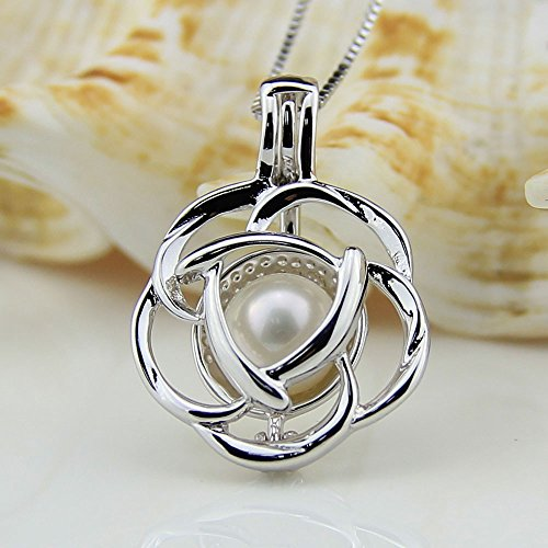 Coobbar 7pcs/set Hollow Pearl Bead Cage Pearl Pendant Necklace Include 1pcs Bead Cage Pearl Pendant 2pcs 925 Sterling Chain 4pcs Color pearl (Rose Pendant)