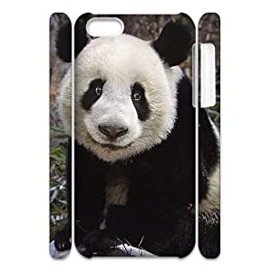 AKERCY Lovely Panada Phone 3D Case For Iphone 5C [Pattern-1]