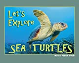 Let's Explore Sea Turtles, Michael Patrick O'Neill, 0972865322