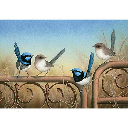 5d Diamond Painting Kits for Adults Kids Full Drill Diamond dotz for Home Wall Decor Birds 15.7x11.8in 1 Pack by Aimerson