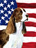 Cheap Caroline's Treasures SS4040GF USA American Flag with Springer Spaniel Flag, Small, Multicolor