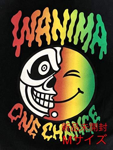 Mサイズ wanima Tシャツ ワンチャン Tシャツ ワニマ PIZZA OF DEATH ピザオブデス Hi-standard エビバデ タイダイ ロンT