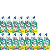Lysol Power & Fresh Cling Toilet Bowl Cleaner Value Pack, Country Scent, 48 Ounce, Count of 14