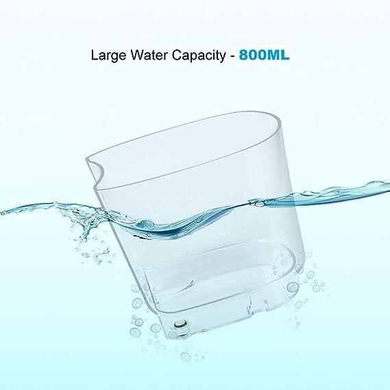Wetoph CK01 Oral Care y Oral Riego, con 5 puntas de pulverización estándar, 3 puntas opcionales gratuitas, 10 modos de presión, 800 ml de gran capacidad: ...