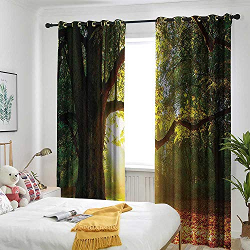 Leaves Decor Living Room/Bedroom Window Curtains Majestic Mighty Oak Tree with Largely Broader Leaves Forest Sun Beams Rays Nature Embossed Thermal Weaved Blackout 120