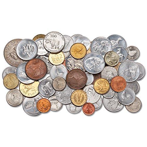 Animal World Coin Set (Set Elephant Coin)