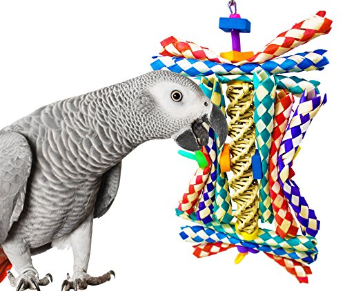 51rwxO1g4aL - Bonka Bird Toys 1242 HELIX BIRD TOY parrot cage toys cages cockatiel conure african grey toys amazon